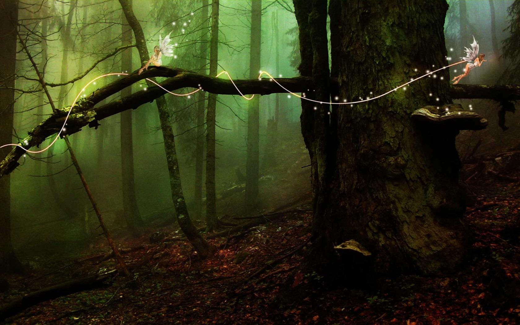 темный лес, ствол дерева, скачать фото, обои на рабочий стол
