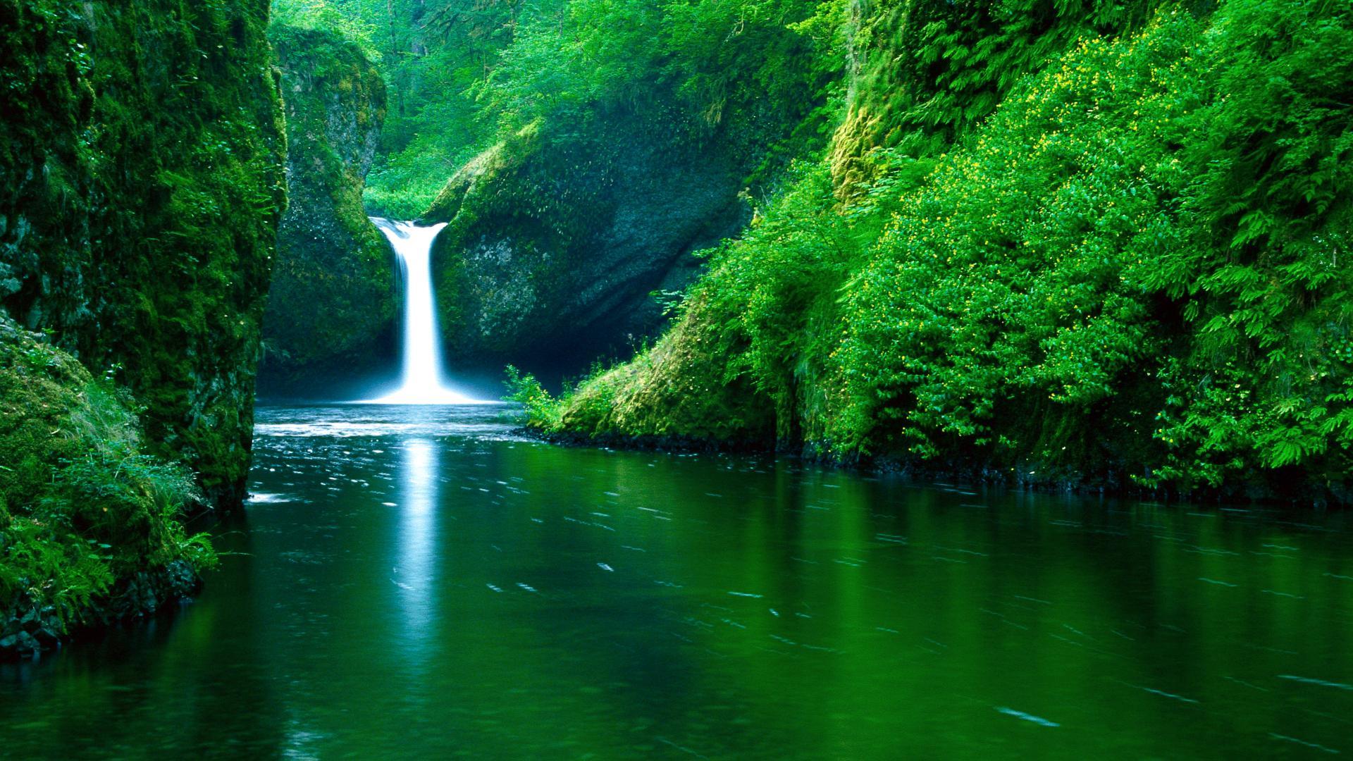 водопад и озерео среди зеленого леса, скачать фото, обои для рабочего стола