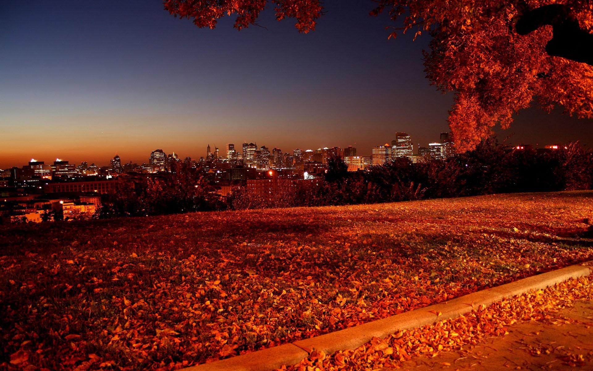 наступила осень, скачать фото, рыжие листья