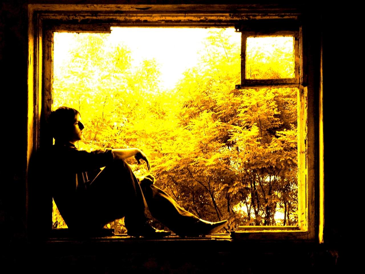 осень, желтые листья в окне, меланхолия, скачать фото, обои для рабочего стола