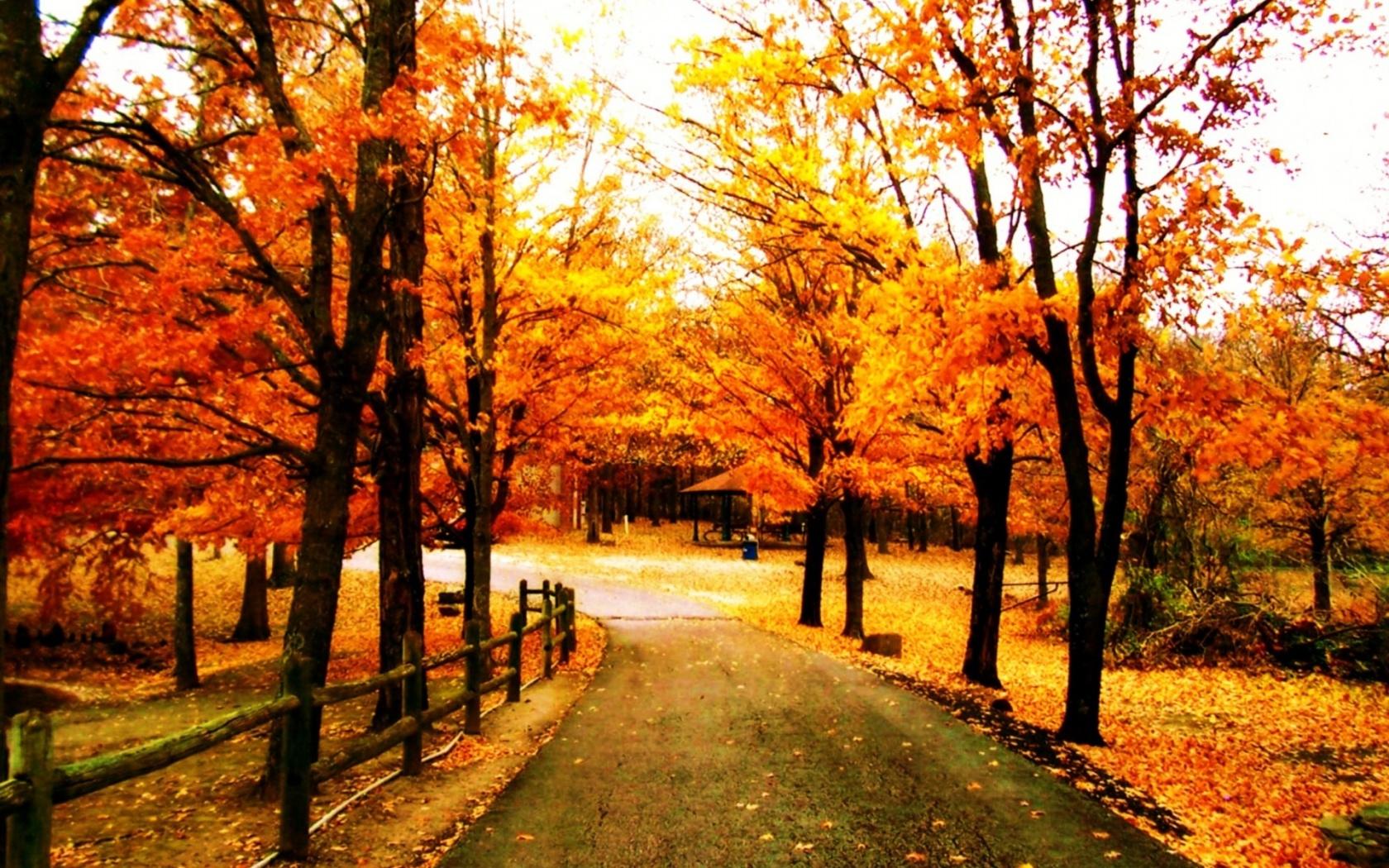 дорога, осень, обои для рабочего стола