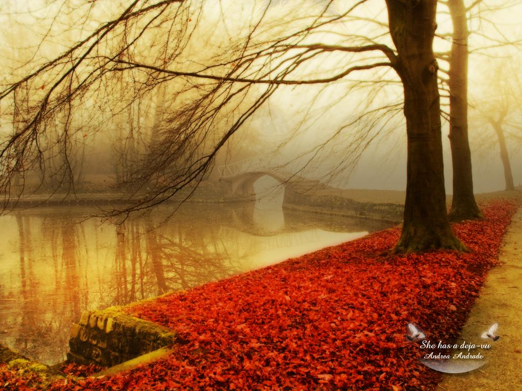 яркая красная листва, скачать фото, обои для рабочего стола, осень, autumn wallpaper