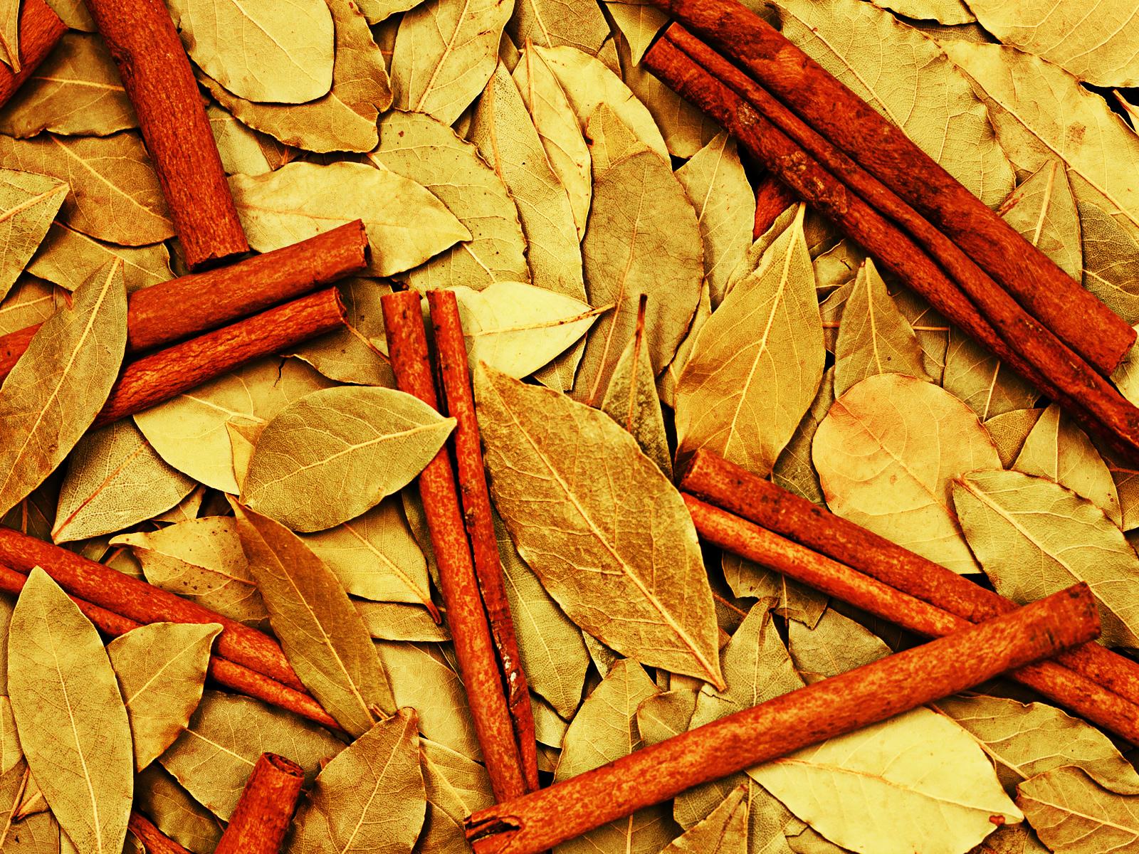 осенний листья, скачать фото, дистопад