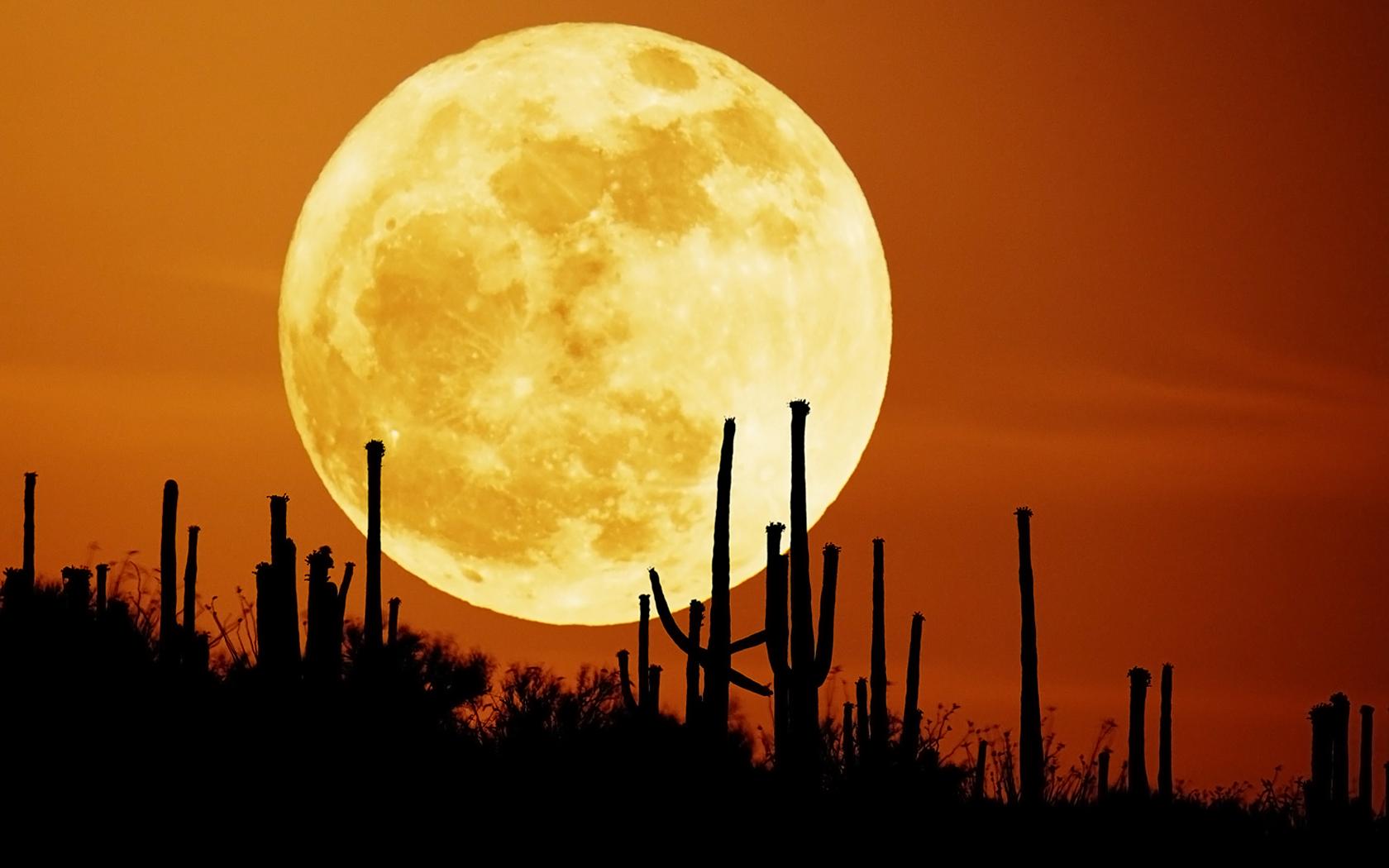 оранжевое небо и луна, скачать фото, moon