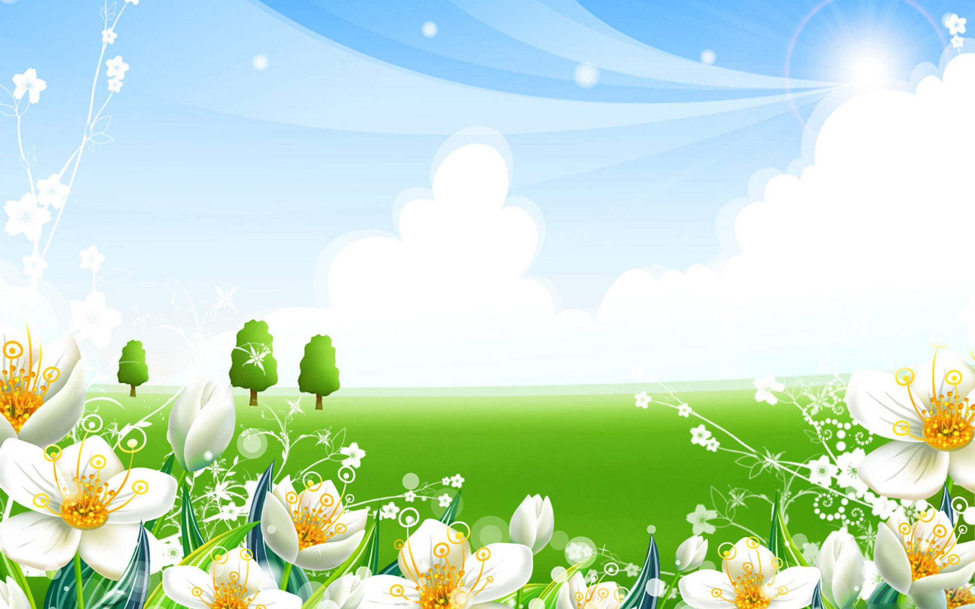 summer flower wallpaper, скачать фото, лето, ромашки, цветы, поляна