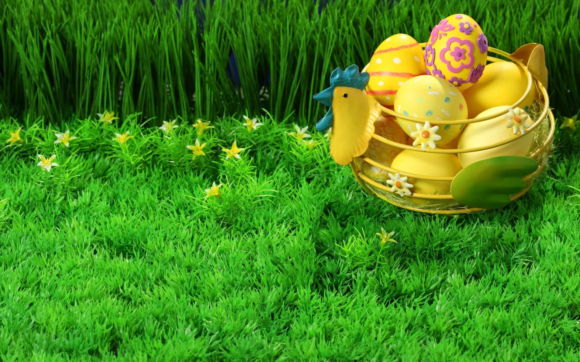 весна, яйца, травка зеленая, скачать фото, spring wallpaper
