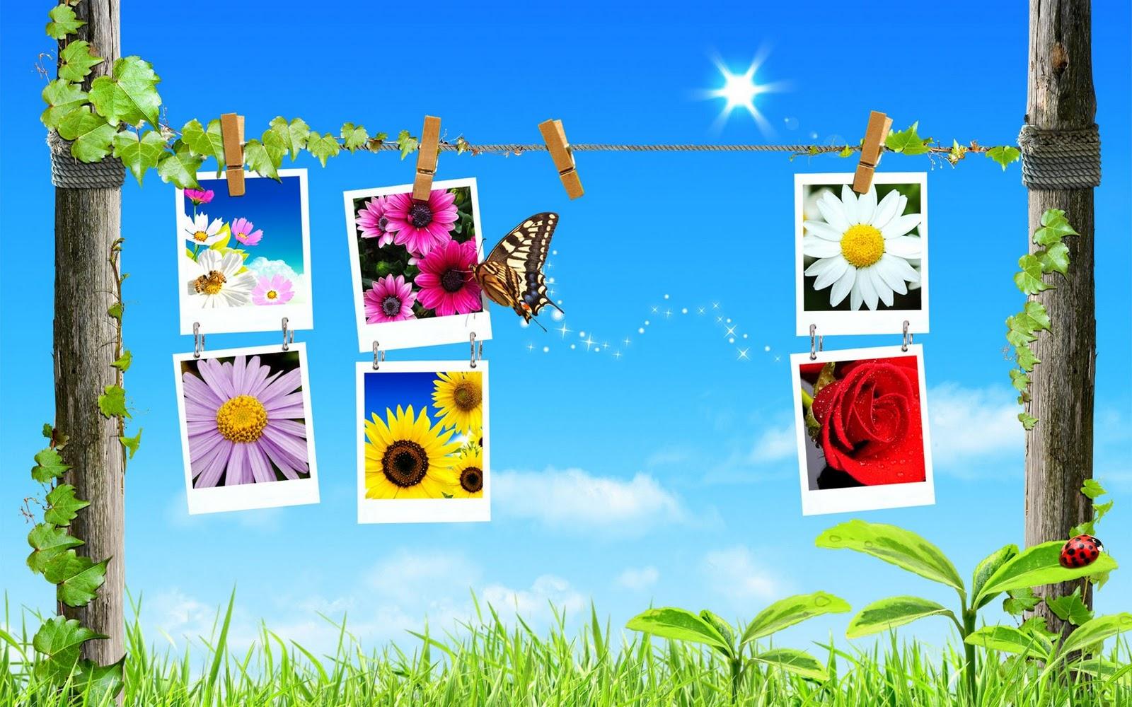 коллаж, цветы, бобочка, небо, весна, скачать фото