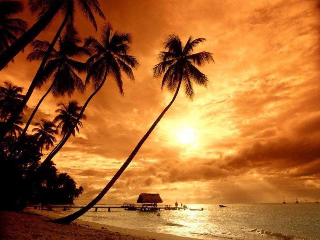пляж, пальмы, закат солнца, скачать фото, обои для рабочего стола, beach wallpaper