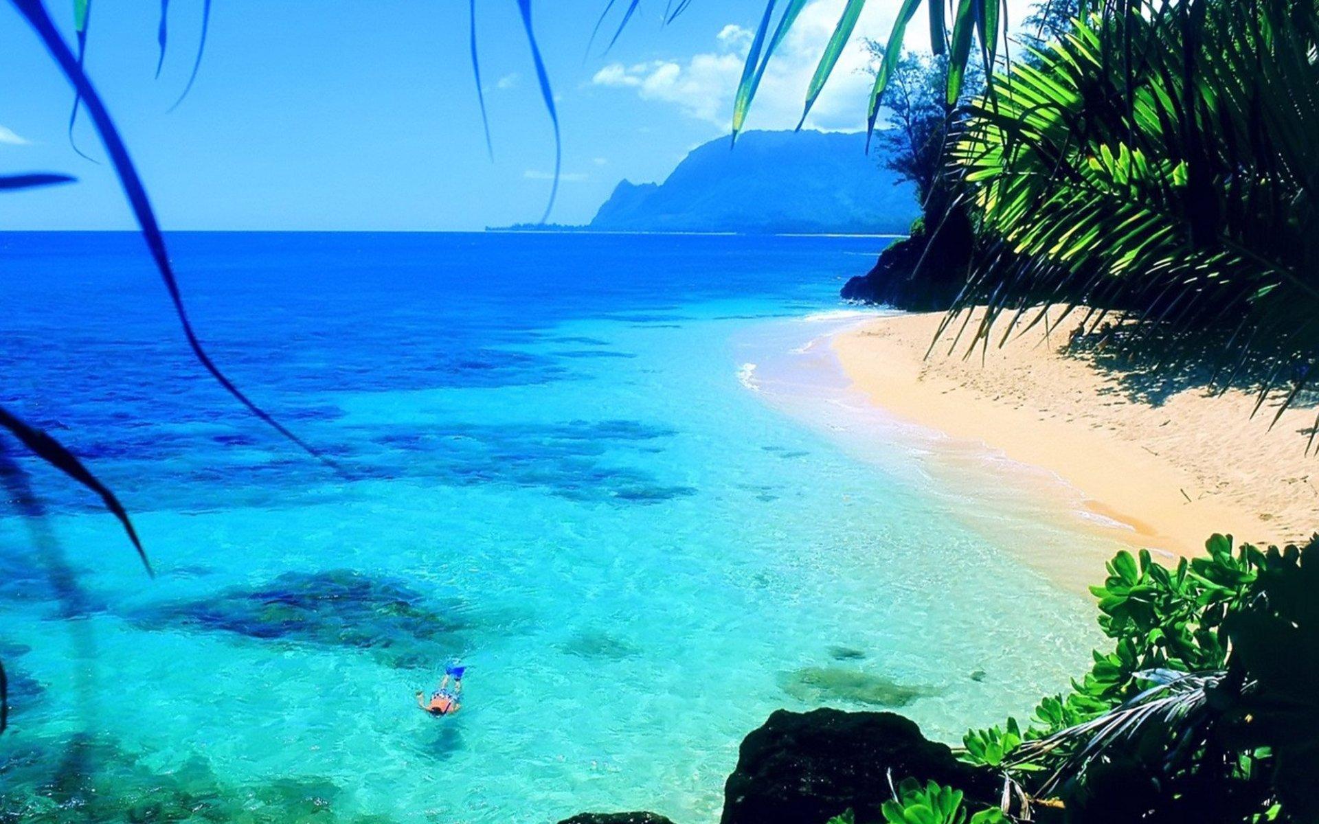 море, пляж, скачать фото, пальмы, песок, beach wallpaper