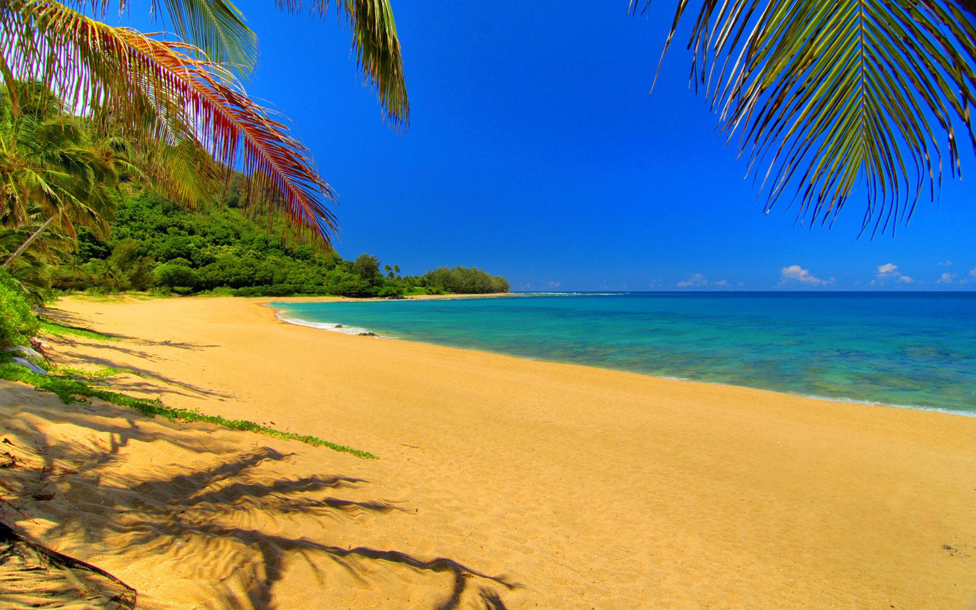 песок, тропический пляж, море, фото