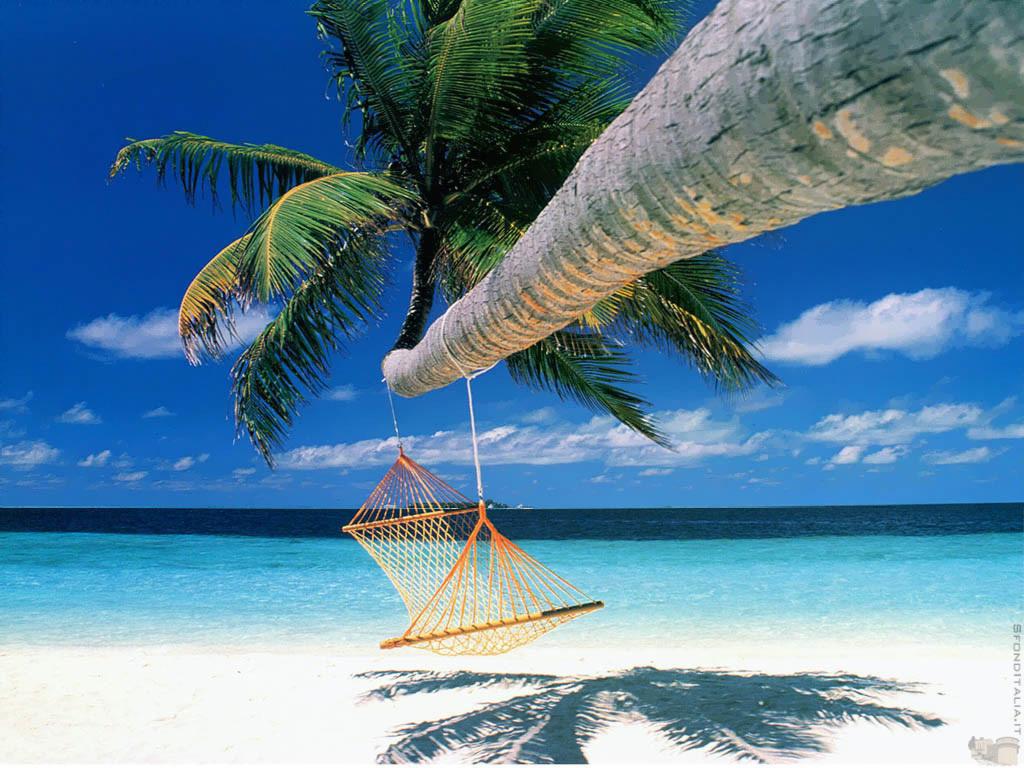 пляж, гамак, сачать фото, обои для рабочего стола, пальма, песок, море