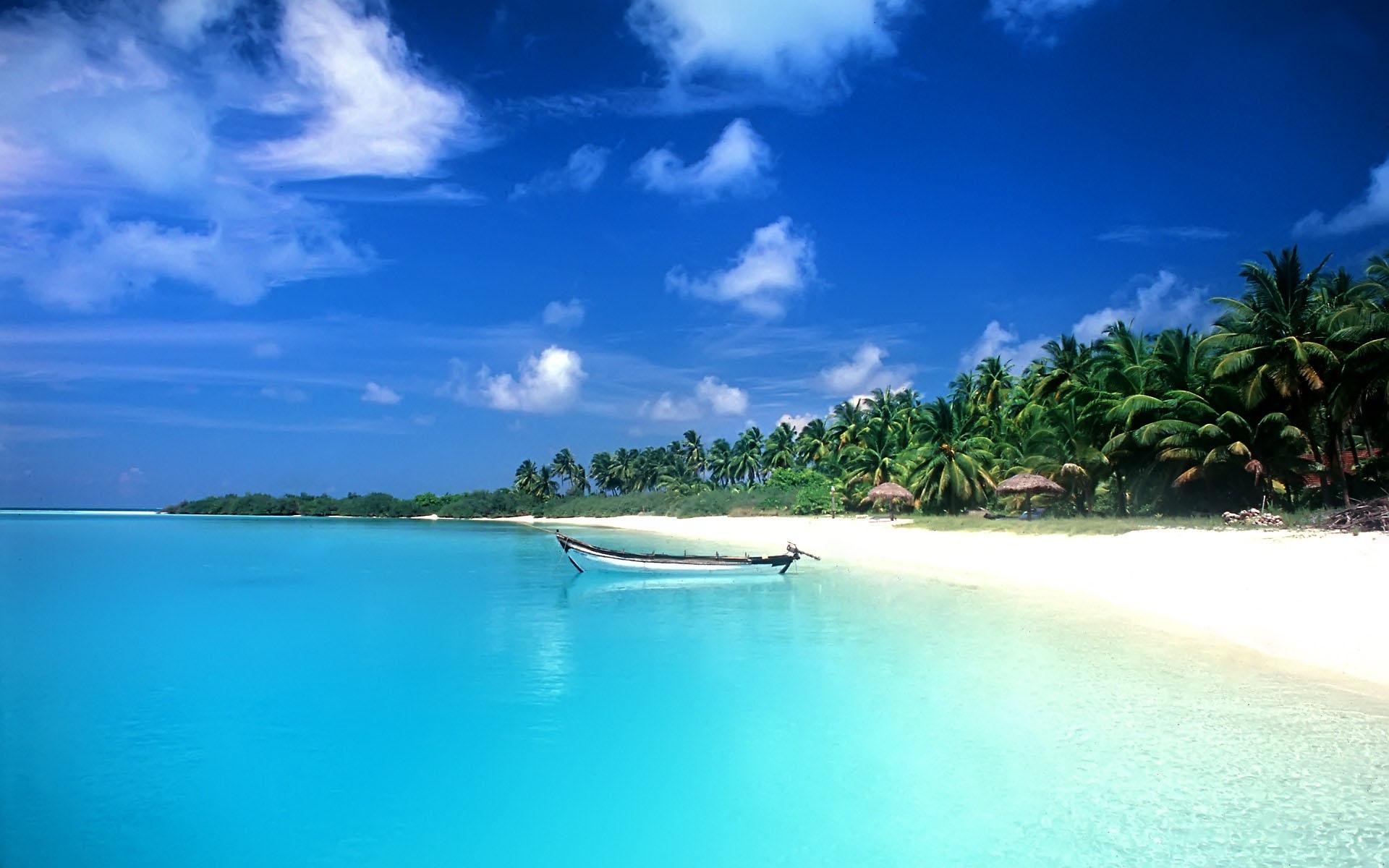 море, песок, пляж, фото, пальмы