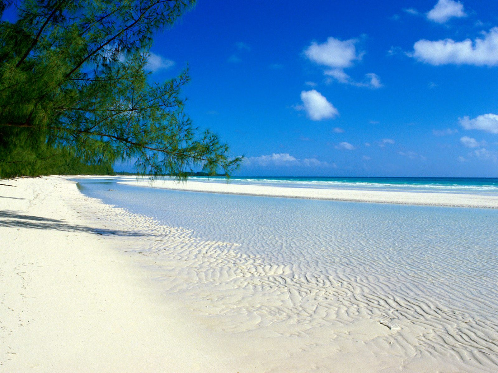 море, пляж, песок, пальмы, скачать фото, обои на рабочий стол