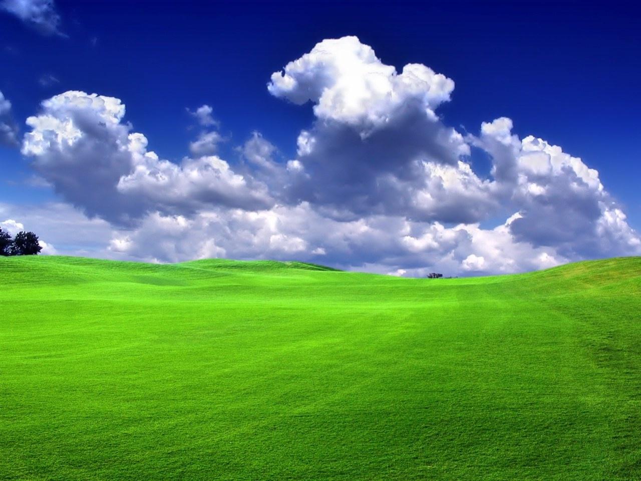 зеленая травка, холмы, windows XP green wallpapers, скачать обои для рабочего стола