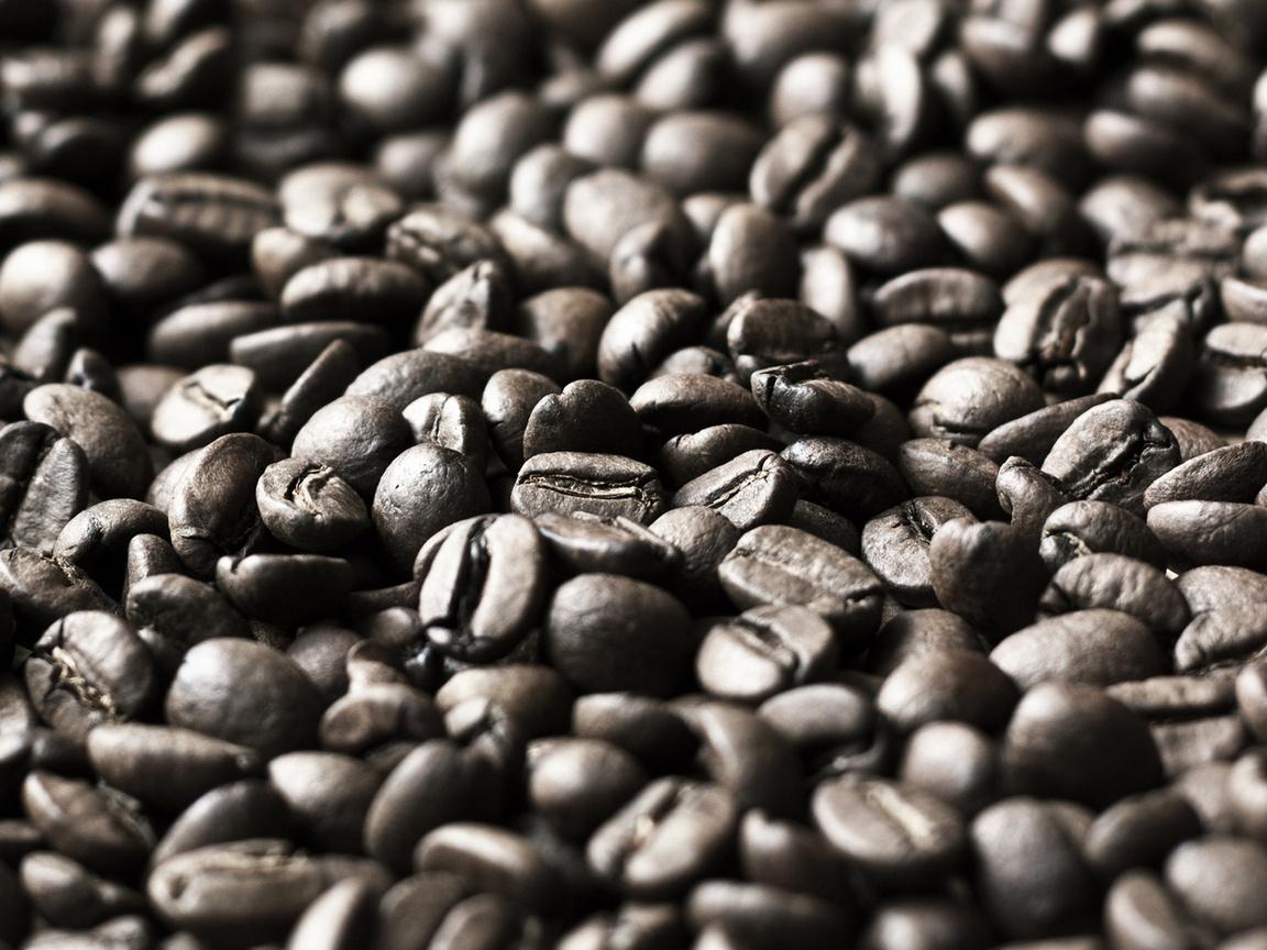 coffee, кофейные зерна, скачать фото, обои для рабочего стола, кофе