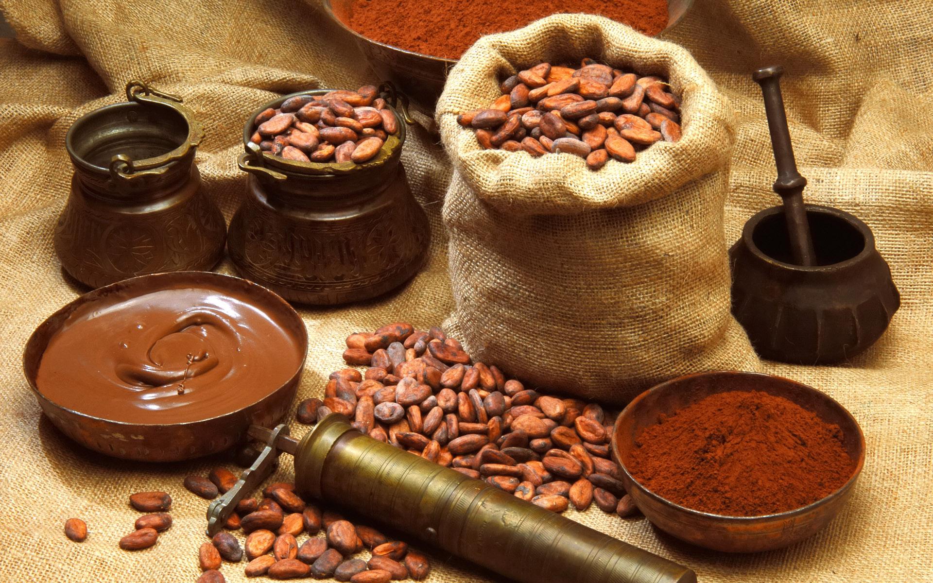 шоколадные обои, chocolate wallpapers, скачать фото, шоколад, фон, какао бобы, зерна