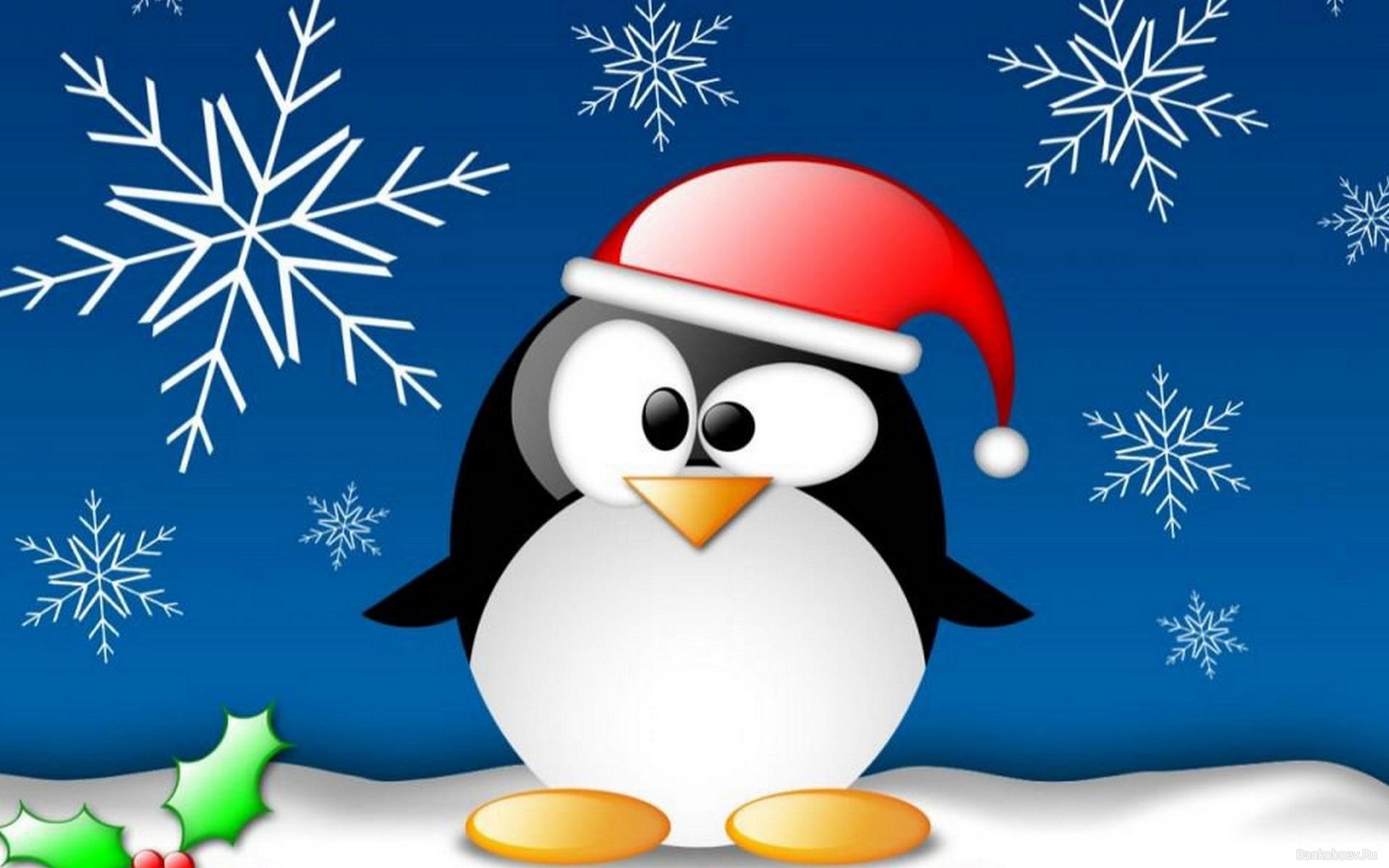 Дед мороз пингвин, Линукс, скачать обои на рабочий стол, Linux Santa Claus wallpaper