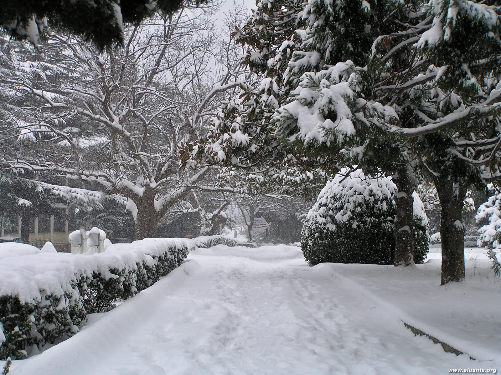 Зима, обои на рабочий стол, дорога, снег, фото