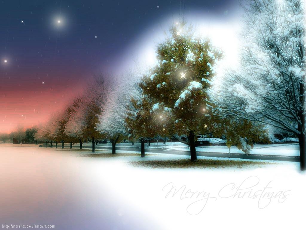 Фотообои на рабочий стол, фото, зима, снег