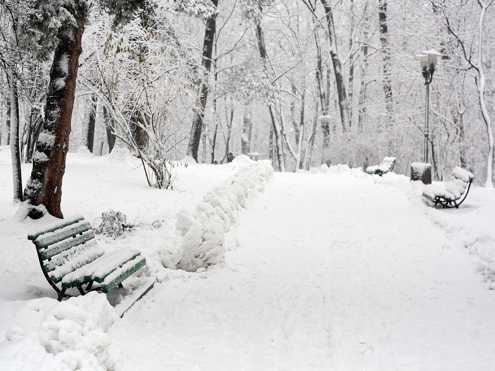 аллея, зима, снег, сугроб, обои для рабочего стола, скачать