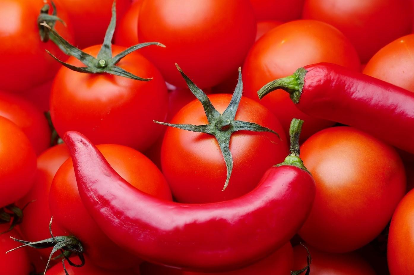 обои для рабочего стола, фото, перец, tomato