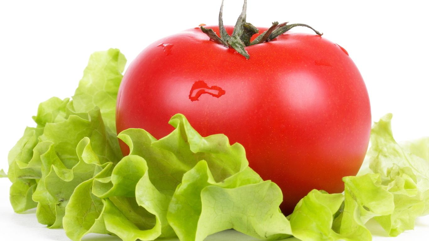Помидоры и салат, фото, обои для рабочего стола, томат