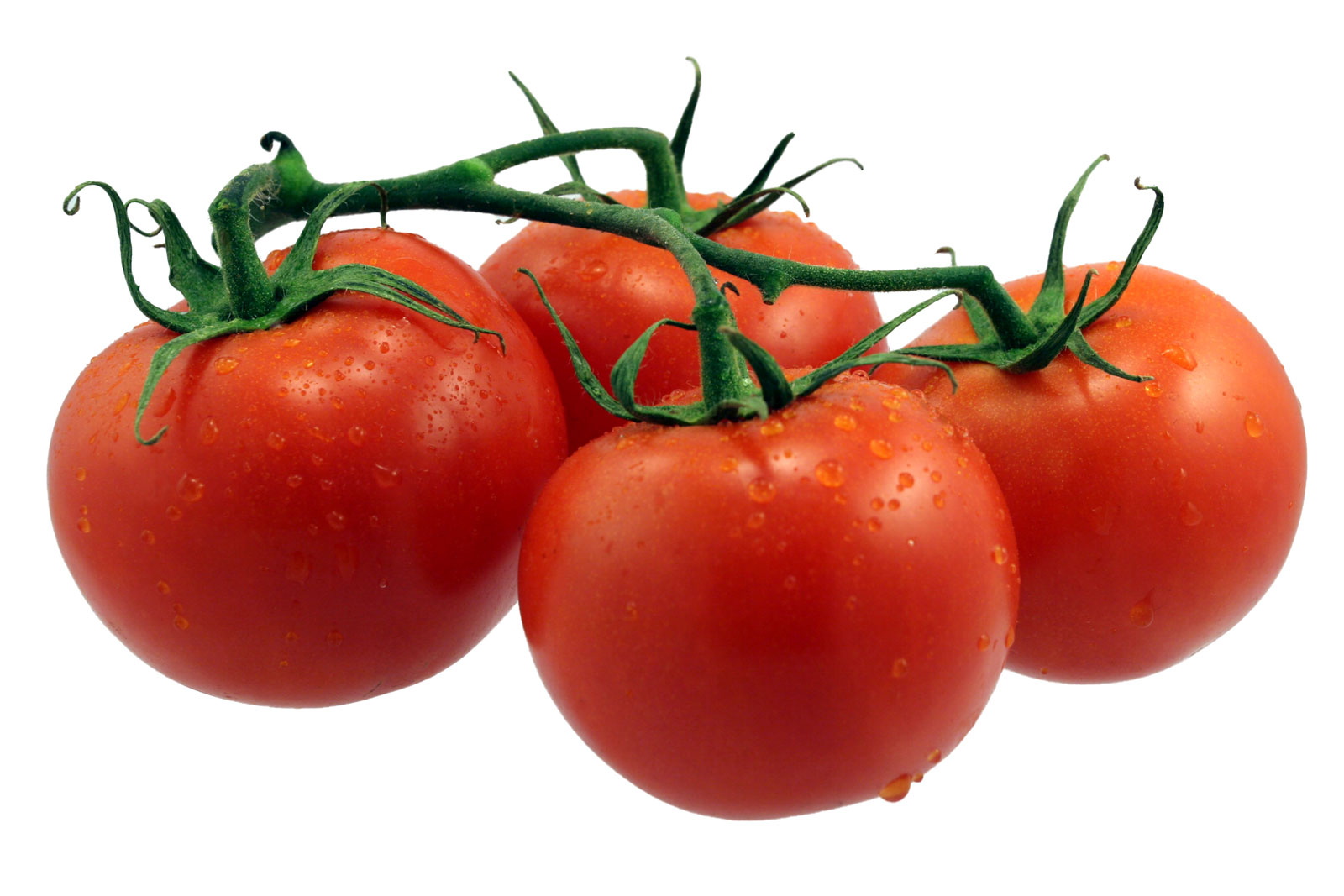 помидоры, фото, обои на рабочий стол